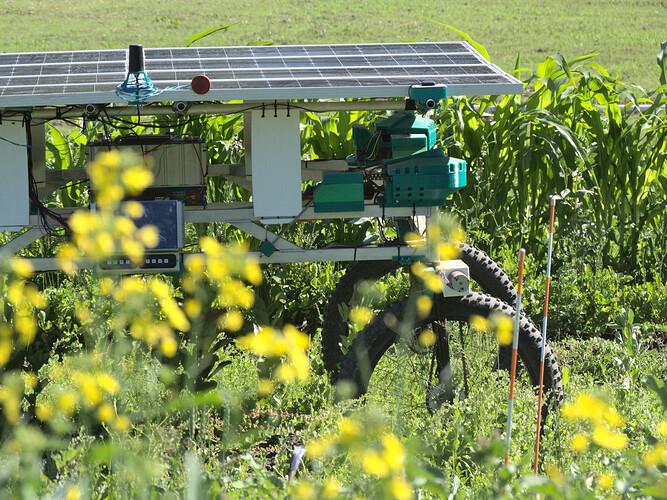 A photo showing our farming robot moving through a field, with flowers visible in the foreground.